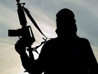 पाकमध्ये अधिक आतंकवादी असल्याने तेथून आलेल्या लोकांवर विशेष लक्ष ठेवा ! – अमेरिकेतील खासदाराची मागणी